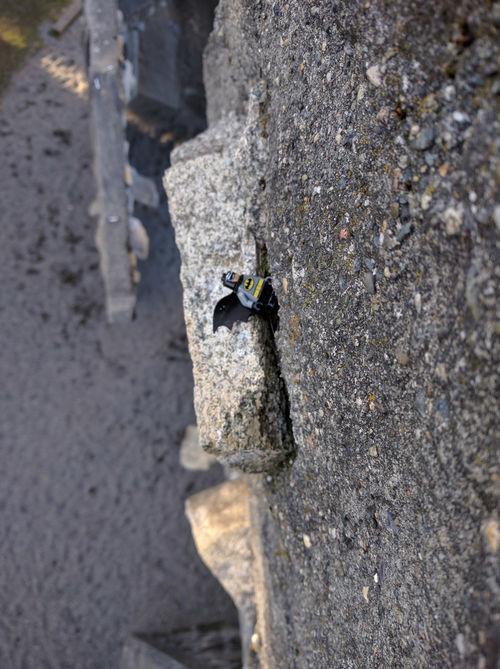 Someone left a nice surprise up on Husky Rock